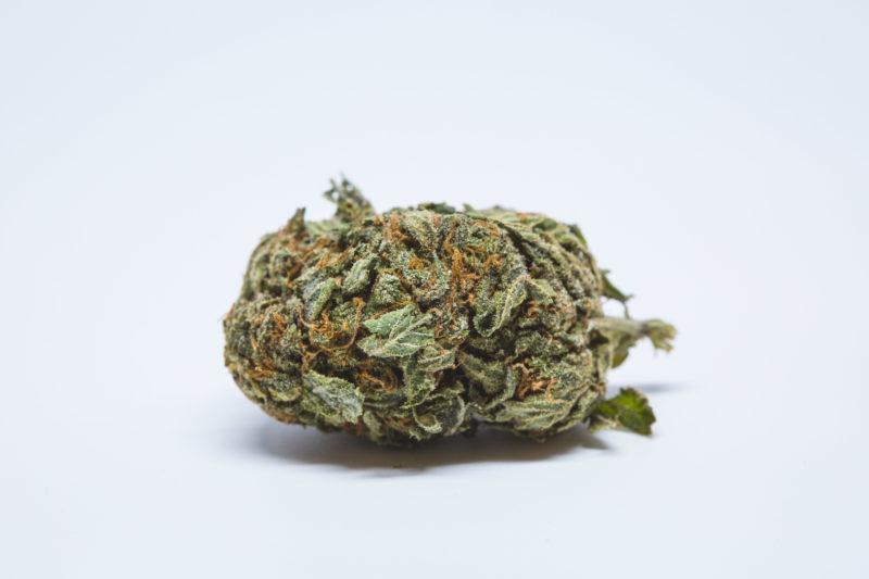 Allevi8 Berry Kush 131 800x533 Berry White Marijuana Strain