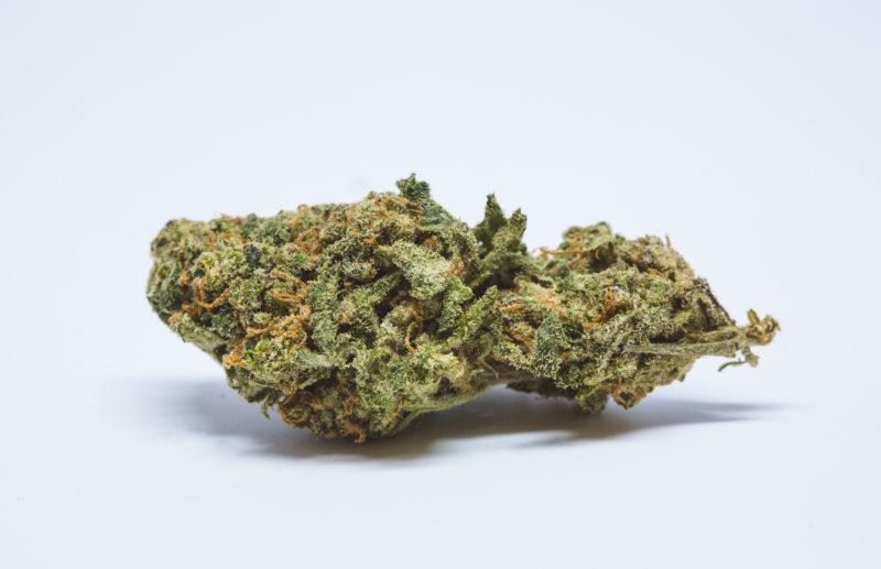 Allevi8 Purple Candy 10 800x517 Candy Kush Marijuana Strain