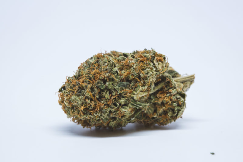 Toronto Dispensary Sweet Haze 5 1 800x533 Obama Kush Marijuana Strain