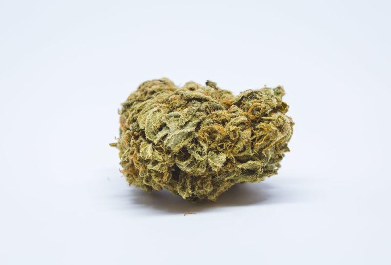 Allevi8 Blueberry Nuken 43 800x543 Blue Diesel Marijuana Strain