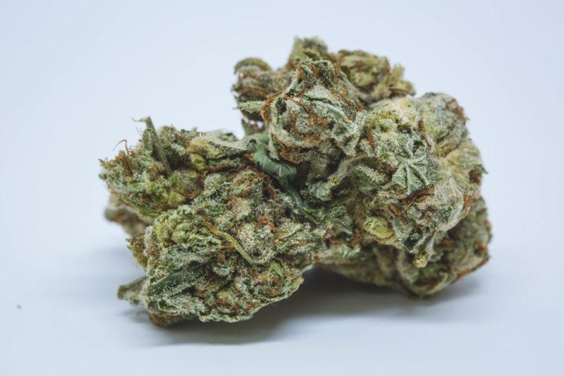 Traphouse Tuna Kush 1 1 800x533 Deadhead OG Marijuana Strain