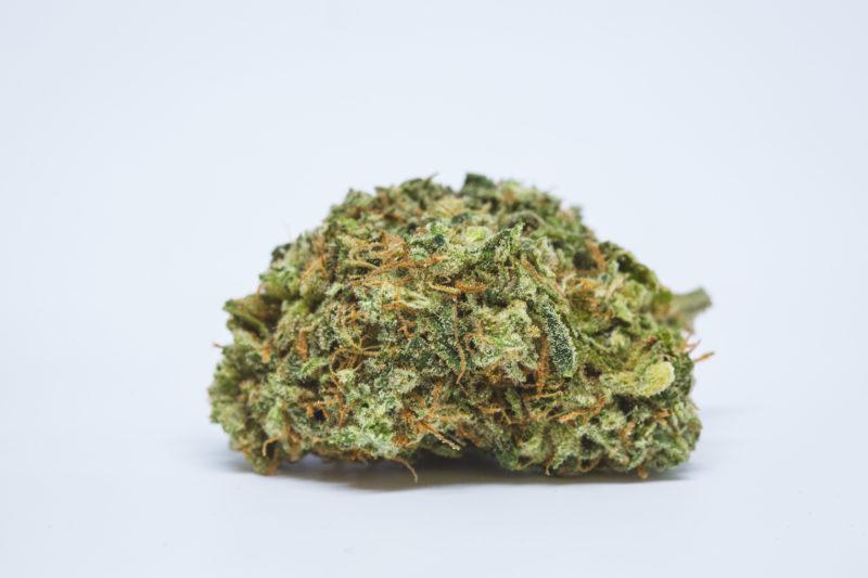 Best Buds Cheese 11 800x533 Dougs Varin Marijuana Strain