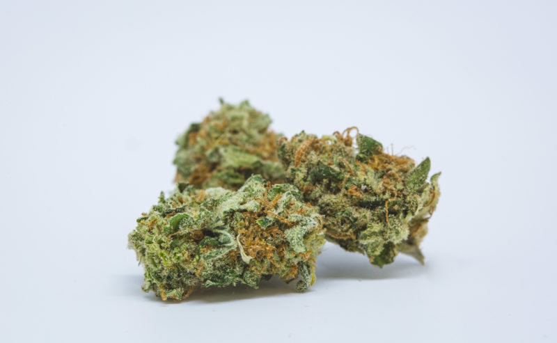 Best Buds Blue Dream 18 800x493 Dream Queen Marijuana Strain