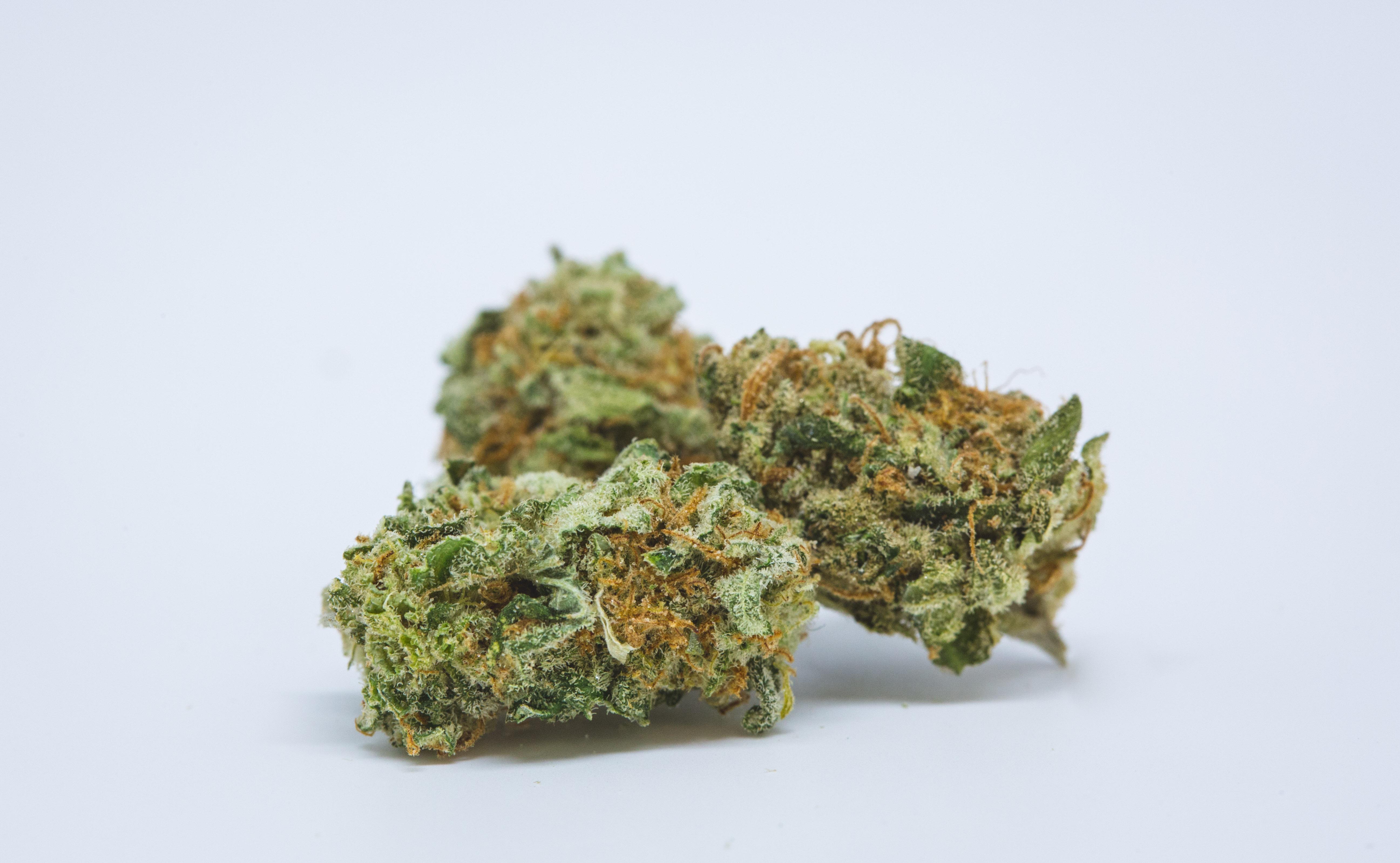 Best Buds Blue Dream 18 The Ten Worst Weed Strain Names