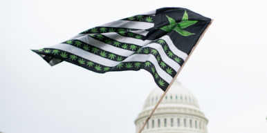 50 reasons to legalize weed 2 of 3 386x193 50 reasons to legalize weed... if youre not convinced youre not listening