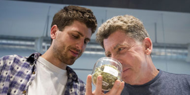 GettyImages 4914415661 386x193 Thanks to this Colorado company, you can now snort your cannabis