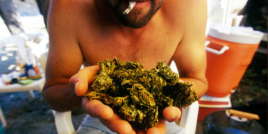 Is marijuana addictive 2 of 3 386x193 Is marijuana addictive?